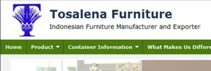 web design Tosalena Furniture
